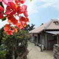 写真:民宿 小浜荘 <竹富島>