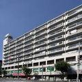 写真:ビジネスホテル ロイヤルイン菊水