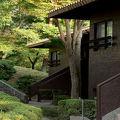 写真:ラフォーレ修善寺 山紫水明