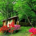 箱根園コテージ(プリンスグランドリゾート) 写真