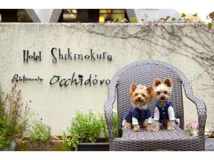 ペットと泊まれる森のホテル ホテル四季の蔵 写真