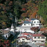 梅ヶ島温泉ホテル 梅薫楼 写真