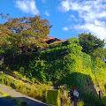おたるないバックパッカーズホステル杜の樹 写真