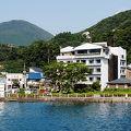芦ノ湖温泉 ホテルむさしや 写真