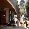 仙石高原大箱根一の湯 写真