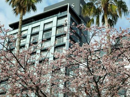 熱海温泉 HOTEL MICURAS(ホテルミクラス) 写真