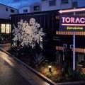 TORACO Konohana 写真