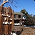 お宿カフェ NICONA 写真