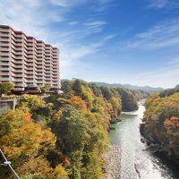 鬼怒川温泉 ホテルサンシャイン鬼怒川 写真