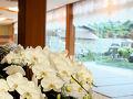 伊勢神宮のお膝元 鳥羽の割烹旅館 胡蝶蘭 写真