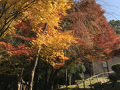関西セミナーハウス・修学院きらら山荘 写真