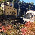 箱根湯本温泉 ままね湯 ますとみ旅館 写真