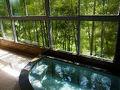 白地温泉 小西旅館 写真