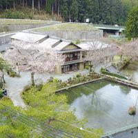 あまご池 高見山荘 写真
