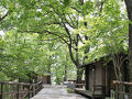 正丸峠ガーデンハウス 写真