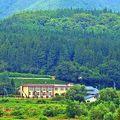 久田旅館 写真