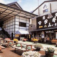 嶽温泉 山のホテル 写真