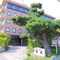 ビジネスホテル 松風 写真