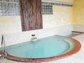 温泉ホテル つつじ荘 写真