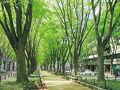 ホテル定禅寺 写真