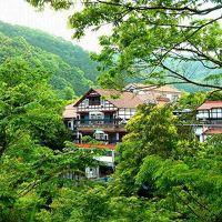 天城湯ヶ島温泉 白壁 写真