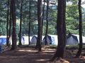 前坂キャンプ場 写真
