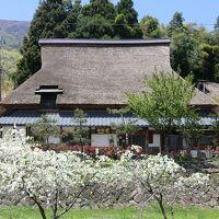 茅葺の里 白谷荘 写真