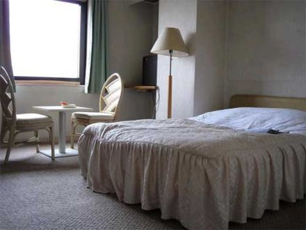 ホテル シヴィックインサヤマ 写真