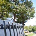北海道青少年会館コンパス 写真