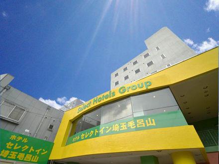 ホテルセレクトイン埼玉毛呂山 写真