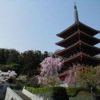 富士旅館 写真