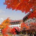 草津温泉 草津ナウリゾートホテル 写真