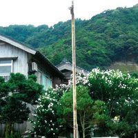民宿 橋本荘 写真