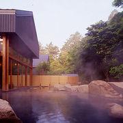 星野温泉 トンボの湯