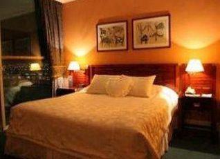Terrado Suites Iquique 写真