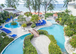 Bougainvillea Barbados 写真
