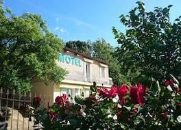 ホテル レ オリヴィエール 写真