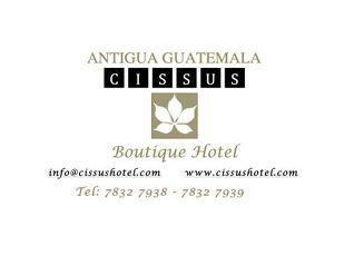 Cissus Hotel Boutique 写真