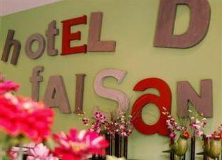 ホテル ドゥ ファイサン 写真