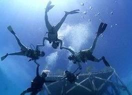 The Reef Dive Resort 写真