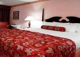 ヒルトン カンザス シティ エアポート ホテル 写真