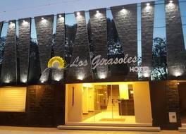 ロス ヒラソレス ホテル