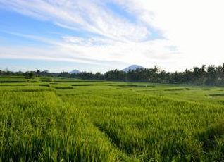 Viceroy Bali 写真