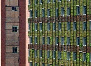 インターコンチネンタル サンティアゴ 写真