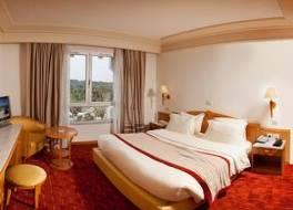 ゴールデン チューリップ エル メシュテル ホテル 写真