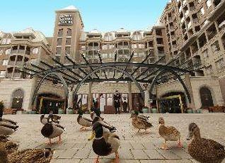 ホテル グランド パシフィック 写真