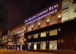ザ ウェスティン カミノ リアル グアテマラ 写真