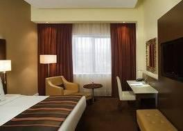 ラディソン ブル ホテル 写真