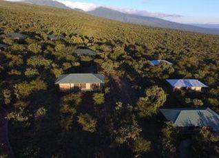 Ngorongoro Wild Campsの宿泊予約・料金比較【フォートラベル