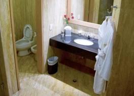 ユーロビルディング ホテル & スイーツ カラカス 写真